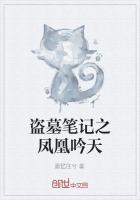 盗墓笔记之凤凰吟天小说