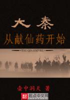 大秦从献仙药开始小说
