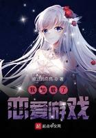 我加载了恋爱游戏小说